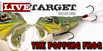 Live 2 Fish New Live Target Lures for 2013 A First Look Gear Reviews Video  Video Live Target Frog Live Target Crappie Crank