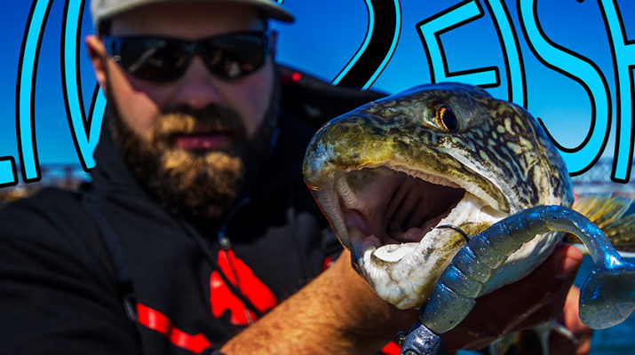 Live 2 Fish The Perfect Jig Underspin Blogs Daniel Notarianni Reviews Tackle  underpin the perfect jig Swimbaits Lake Trout Fishing