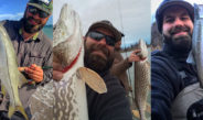 Live 2 Fish Looking Back at 2016 Daniel Notarianni Blogs Daniel Notarianni