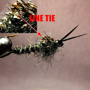 Live 2 Fish Top Five Lures To Pack To Fish The River Articles Gear Rigging River Fishing